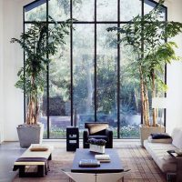 Outdoor/Indoor Interior